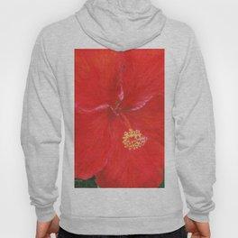 Hibiscus by Teresa Thompson Hoody