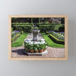 California USA Filoli Gardens Tulips Nature Flowers Crocuses tulip flower Framed Mini Art Print