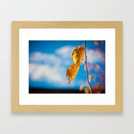 Catchy Autumn Framed Art Print