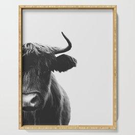 Highland bull Serving Tray