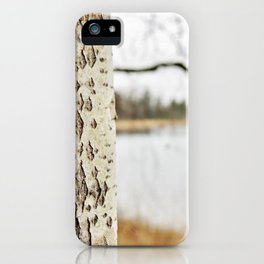 Aspen bark and gray lake iPhone Case