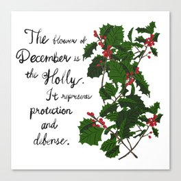 Holly - Birth Month Flower for December Canvas Print