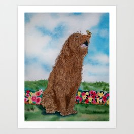 Chocolate Labradoodle and Butterfly Art Print