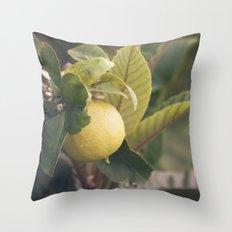 Limón Throw Pillow