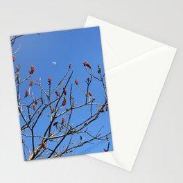 sumac moon Stationery Cards