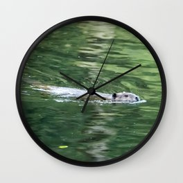 Beaver on an Evening Swim Wall Clock