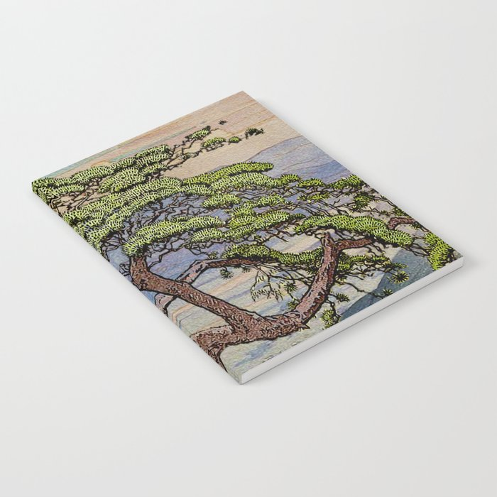 The Downwards Climbing Notebook