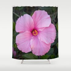 Single Pink Hibiscus Shower Curtain