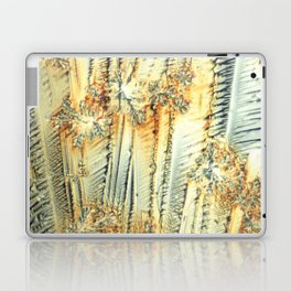 Vitamin C Sources for Happiness Laptop & iPad Skin