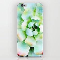 Mint Watercolor Succulent iPhone & iPod Skin
