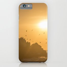 Sunset and Birds Flying iPhone Case