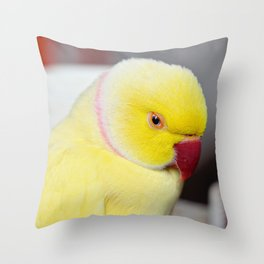 Bright and Sleepy Throw Pillow