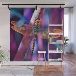 Dragonfly In Orange and Blue Wall Mural