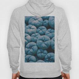 Blue Pumpkins (Color) Hoody