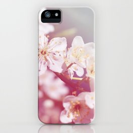 *Pinklight - Plum Blossoms iPhone Case
