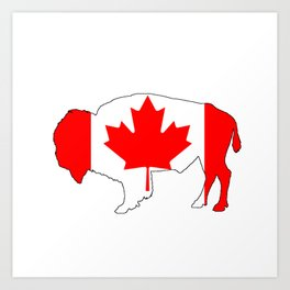 Canada Bison Art Print