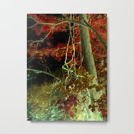 Canadian Maple 3 Metal Print