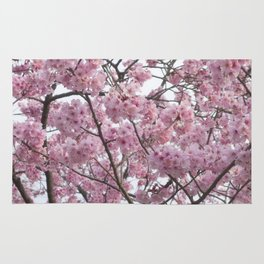 Cherry Blossom Trees. Pink flowers Rug
