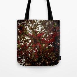 redglobe Tote Bag