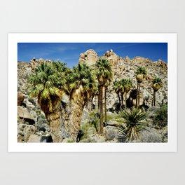 Thousand Palms Art Print