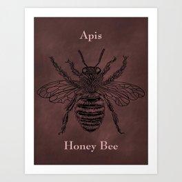Honeybee Apis Art Print