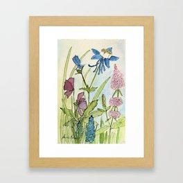 Columbine Garden Flower Watercolor Framed Art Print