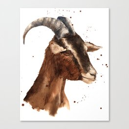 Goat, billy goat, goat painting, goat print, cute animal art, watercolor animals, animal paintings Canvas Print