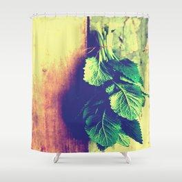 Lemon Balm interior Shower Curtain
