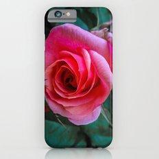 Resplendent Rose iPhone 6s Slim Case