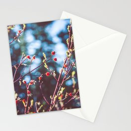 Berries at the Lake  Stationery Cards