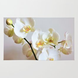 Orchid romace Rug