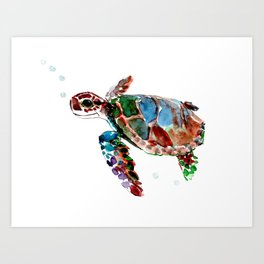 Baby Sea Turtle Art Print