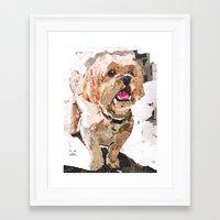 shih tzu Framed Art Prints featuring Simba The Shih Tzu by Maritza Hernandez