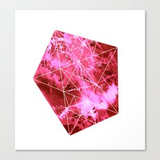 Querido Asteroide Canvas Print