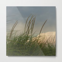 Windy // Nature Photography Metal Print