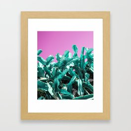 Kaktush Framed Art Print