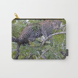 Leopard in a tree, Africa wildlife Carry-All Pouch