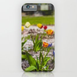 Flowers by the House 1 iPhone Case