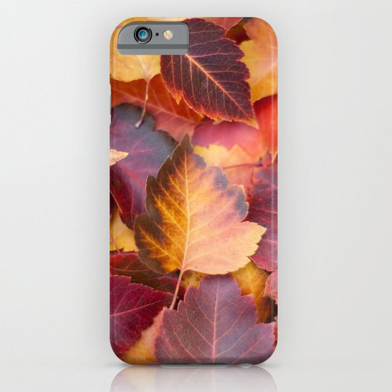 Autumn's Carpet iPhone & iPod Case