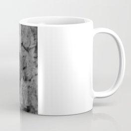 Haliaeetus leucocephalus Coffee Mug