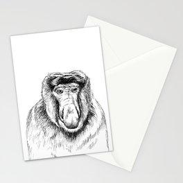 Proboscis Monkey Drawing Stationery Cards
