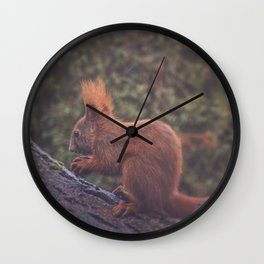 Squirrelicious Wall Clock