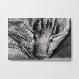 Sleepyhead Metal Print