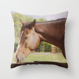 Frank in the sunlight Throw Pillow