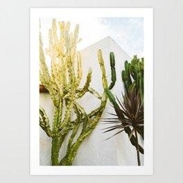California Cactus Garden Art Print