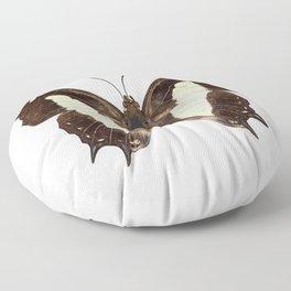 Polyura athamas athamas butterfly Floor Pillow