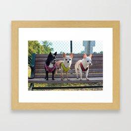 brat pack Framed Art Print