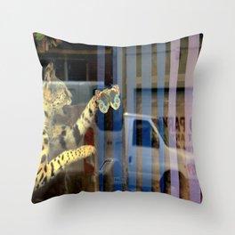 Meter Expired Throw Pillow