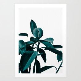 PLANT 2a Art Print