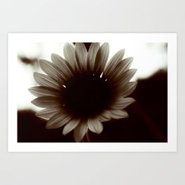 Dark Sun-Flower Art Print
